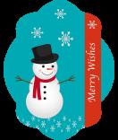 Klebe-Etiketten Frosty 47 x 60 mm türkis