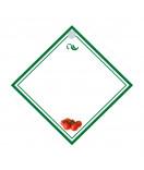 15 Anhänge-Etiketten Ilonas Finest Tomate 50 x 50 mm