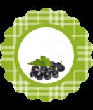 0 Klebe-Etiketten rund Sweet Fruits Johannisbeer